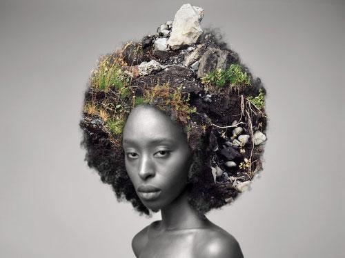 fashion art prints nature